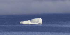 Justin Kan argues startups self-destruct more than they are hit by icebergs (external events).